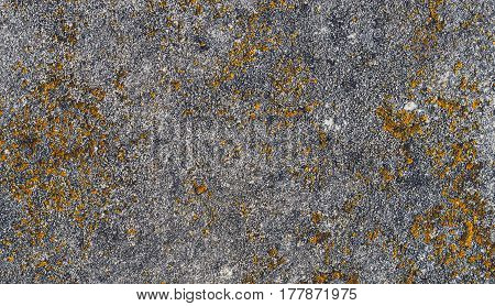 Yellow and grey background with concrete texture horizontal top view isolated vintage dark wood backdrop old rustic stone board space blank back on the table mockup brick nuture wall