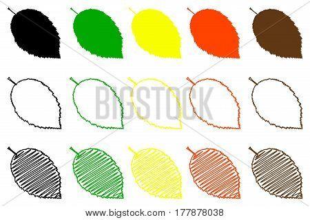 hornbeam leaf color set , hornbeam leaf