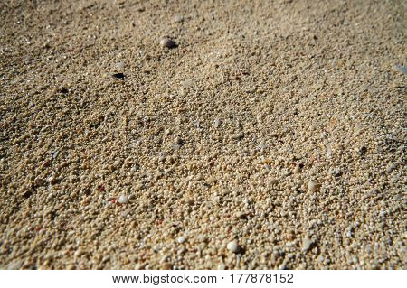 A simple close-up of the beach sand in the tropics. New Providence, Nassau, Bahamas.