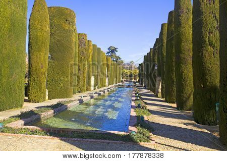 The Gardens Of The Alcazar De Los Reyes Cristianos In Cordoba, Andalusia Region, Spain.