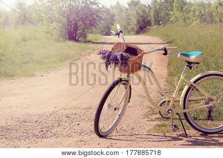 Rural road with a bicycle and a basket of wildflowers / floral walks in the fresh air