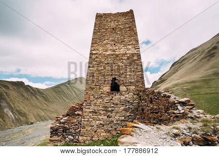 Old Stone Watchtower Of Ancient Fortress On Mountain Background Near Karatkau Village, Kazbegi District, Mtskheta-Mtianeti Region, Georgia. Spring, Summer Season. Truso Gorge.