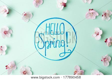 Hello Spring Note With Cherry Blossom Flowers