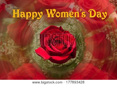 Happy Women's Day or International Womens Day celebrated on March 8th. Red rose with swirling roses background image