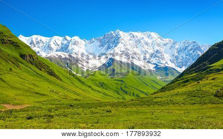 Large green lawn covered with yellow and white flowers and all around stand high mountains in snow and beautiful sky on a summer day. Upper Svaneti Georgia Europe.