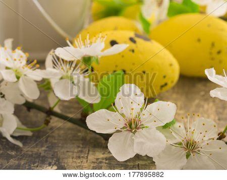 Easter eggs in spring arrangement