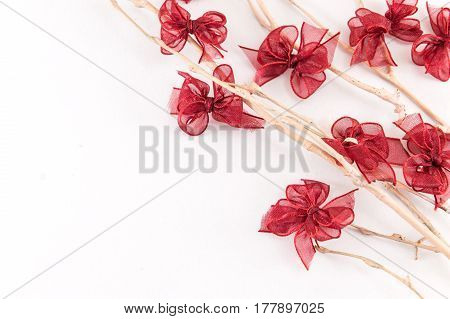 Bare Twigs And Ribbons