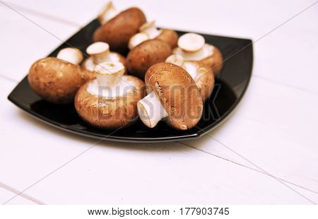 A royal mushrooms on a wooden background