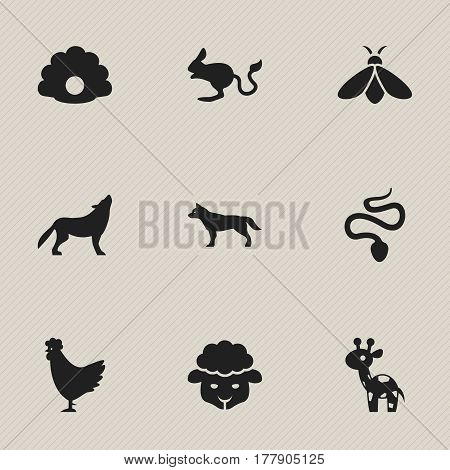 Set Of 9 Editable Zoology Icons. Includes Symbols Such As Serpent, Dog, Honey And More. Can Be Used For Web, Mobile, UI And Infographic Design.