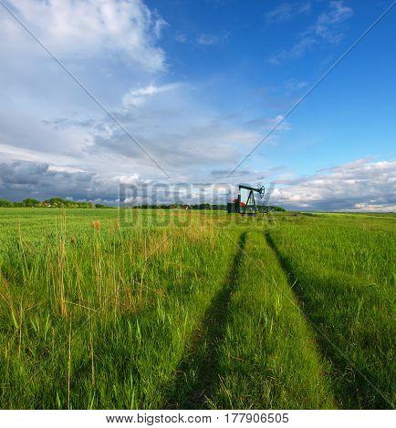 A pumpjack by a grassy