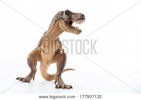 Dinosaur Tyrannosaurus Rex with open mouth in attack position - white background