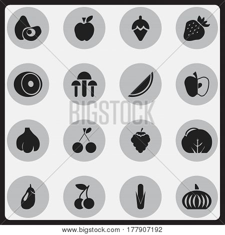 Set Of 16 Editable Berry Icons. Includes Symbols Such As Morello Cherry, Strawberry, Melon And More. Can Be Used For Web, Mobile, UI And Infographic Design.
