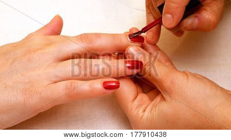 Manicure in the beauty salon. Painting and polishing nails. Spa nails cuticle scarfskin procedure.