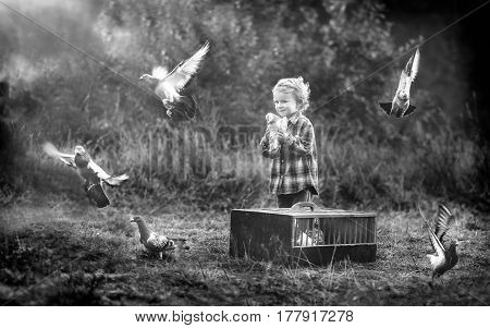 Little Pigeon Fancier. Boy Playing With Flying Pigeons.