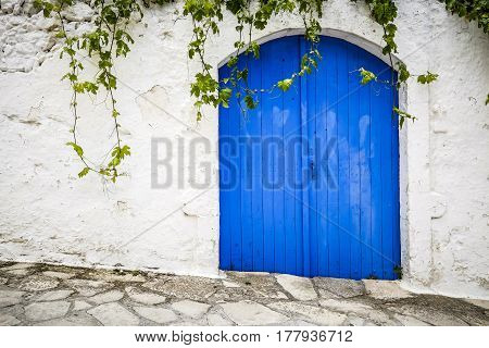 big blue door and a white wall where ivy grows on the island of Crete Greece