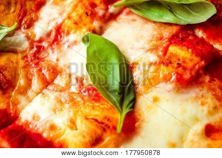 Slice Of Pizza With Cheese And Spices And Leaves Of Basil Close Up