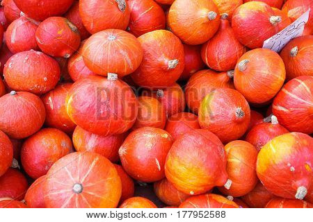 Many Red Autumn Pumpkins On Market Background Texture