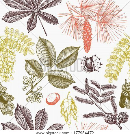 Spring background with decorative garden trees illustrations. Vector botanical elements.