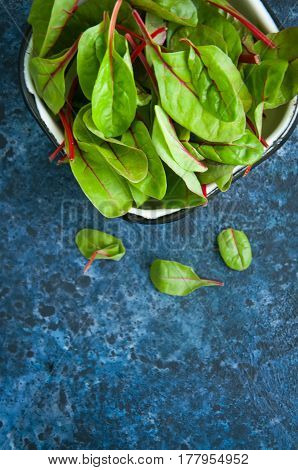 Fresh Baby Mangold Leaves On A Blue Textured Background. Copy Space.