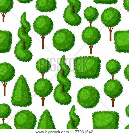 Boxwood topiary garden plants. Seamless pattern with decorative trees.