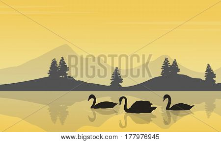 Collection stock of swan on lake silhouettes vector art