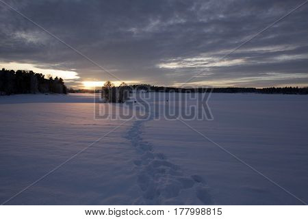 A trail of snowy footprints leading towards the sunset.