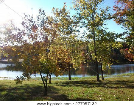 Beyond The Colorful Leaves On The Trees, The Cool, Clear Waters Of The Lake Reflect The Glory Of Thi