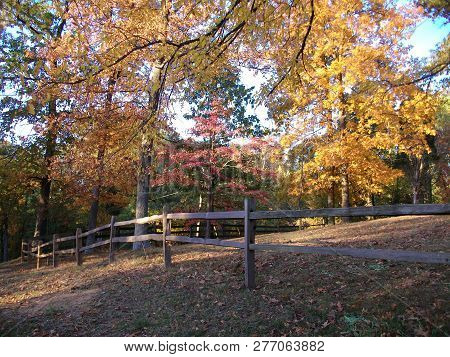 An Old Wooden Fence Alongside A Country Driveway, Against A Backdrop Of Autumn Foliage, In Rural Ken