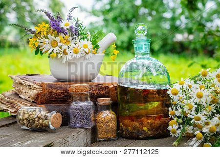 Mortar Of Healing Herbs, Bottles Of Healthy Essential Oil Or Infusion And Dry Medicinal Herbs, Old B