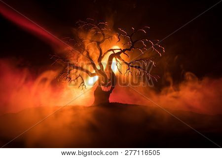 Silhouette Of Scary Halloween Tree With Horror Face On Dark Foggy Toned Fire. Scary Horror Tree Hall