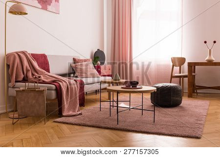 Elegant Living Room Interior With Trendy Grey Sofa With Pastel Pink Pillow And Burgundy Blanket, Woo