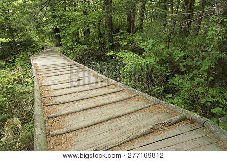 Wooden Foot Bridge On Hiking Trail In Hotaka Mountain Range, Kamikochi National Park, Kamikochi, Jap
