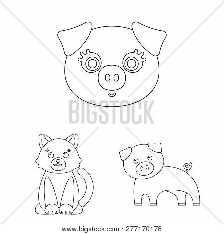 Isolated Object Of Animal And Habitat Sign. Collection Of Animal And Farm Stock Symbol For Web.