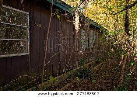 Exterior Of An Abandoned Foreclosed Home In Rural Florida With Overgrown Vegetation