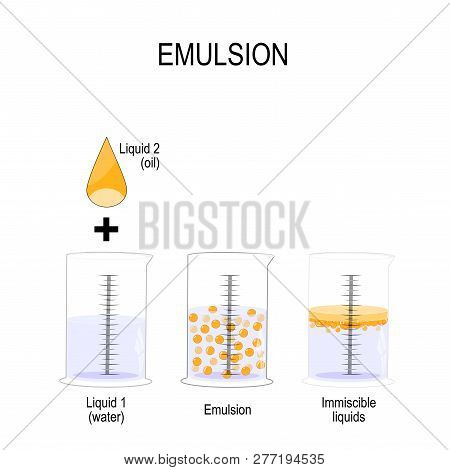 Emulsion Is A Mixture Of Two Liquids That Are Normally Immiscible. Oil Drop And 3 Graduated Cylinder