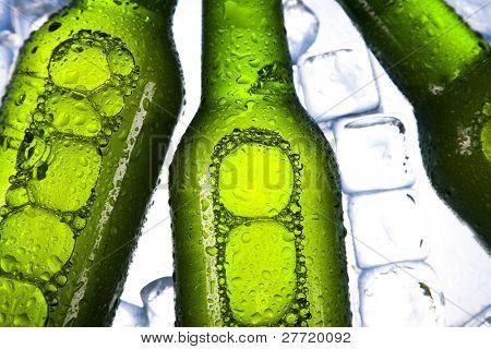 Cold beer bottle