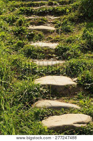 Stone Walkway In The Garden Meditative Stone Walkway. Garden Architecture,