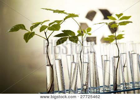 Chemical laboratory glassware equipment, ecology poster