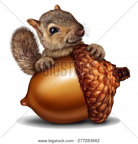 Funny Squirrel Holding A Giant Acorn Tree Nut As A Wealth Or Wealthy Metaphor For Business And Finan