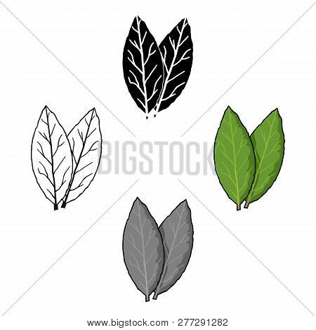 Laurus Icon In Cartoon Style Isolated On White Background. Herb An Spices Symbol Stock Vector Illust