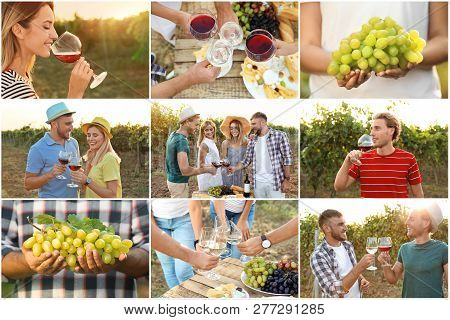 Set With Different Kinds Of Grapes, Wine And People At Vineyard