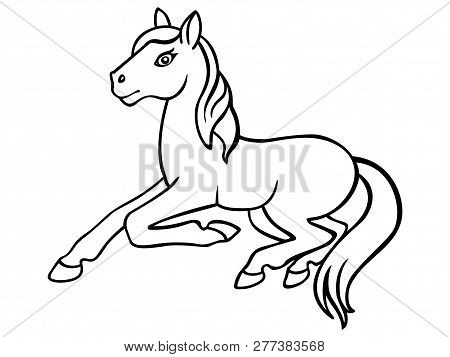 Foal. Little Horse Linear Picture For Coloring. Pony - Coloring Book For Children And Adults. Outlin