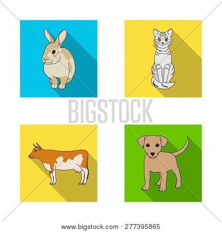 Isolated Object Of Animal And Habitat Symbol. Collection Of Animal And Farm Stock Vector Illustratio