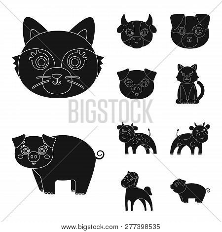 Vector Design Of Animal And Habitat Symbol. Set Of Animal And Farm Vector Icon For Stock.