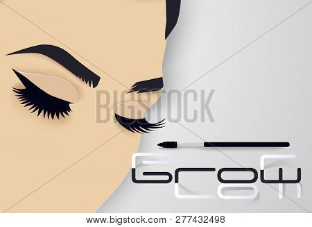 Brows And Lashes Lettering. Vector Illustration Of Lashes And Brows. For Beauty Salon, Lash Extensio