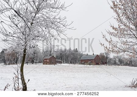 Red Barns In Rime Frost - Minnesota, Usa