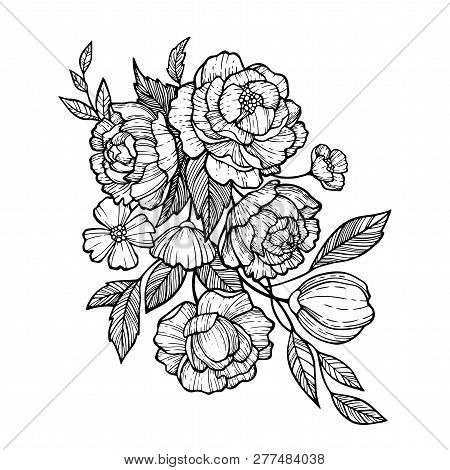 Sketch Floral Botany Set. Peony, Fever Few, Camellia, Narcissus, Daisy And Leaf Drawings. Black And