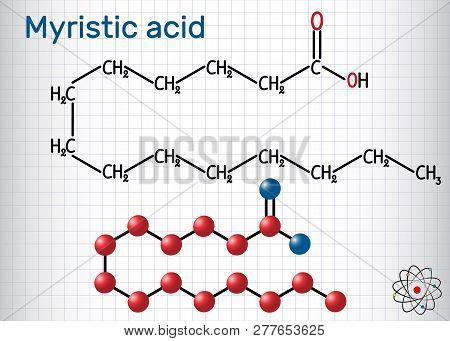 Myristic (tetradecanoic) acid molecule. It is saturated fatty acid. Structural chemical formula and molecule model. Sheet of paper in a cage. Vector illustration poster