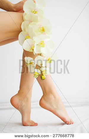 Beautiful Soft Skin. Closeup Of Long Woman Legs With Perfect Hairless Smooth And Silky Skin. Hair Re