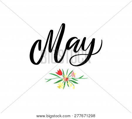 May Month Name. Handwritten Lettering With Seasonal Flowers. Season Vector Illustration As Poster, P